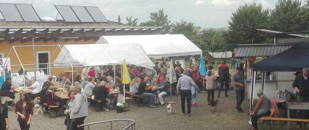 sommerfest-2017-impression-a